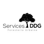 Services DDG